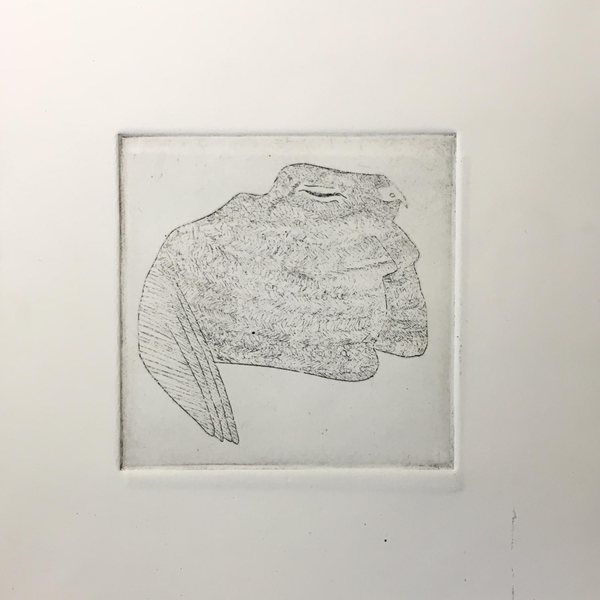 (c) Confais L'Engoulevent de Nuttall La Chauve Souris Eau Forte 10x10 imprimé sur papier Hahnemühle 20x20 en 40 exemplaires numérotés et signés