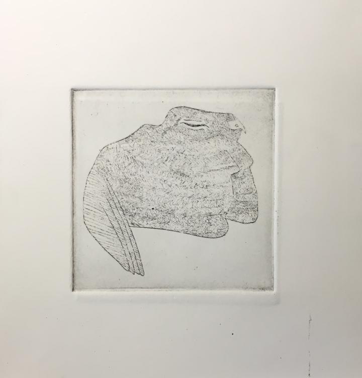 (c) Confais L'Engoulevent de Nuttall La Chauve Souris Eau Forte 10x10 imprimé sur papier Hahnemühle 20x20 en 30 exemplaires numérotés et signés