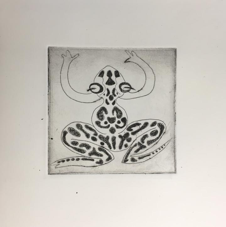 (c) Confais Les Hibernés La Grenouille Eau Forte 10x10 imprimé sur papier Hahnemühle 20x20 en 30 exemplaires numérotés et signés