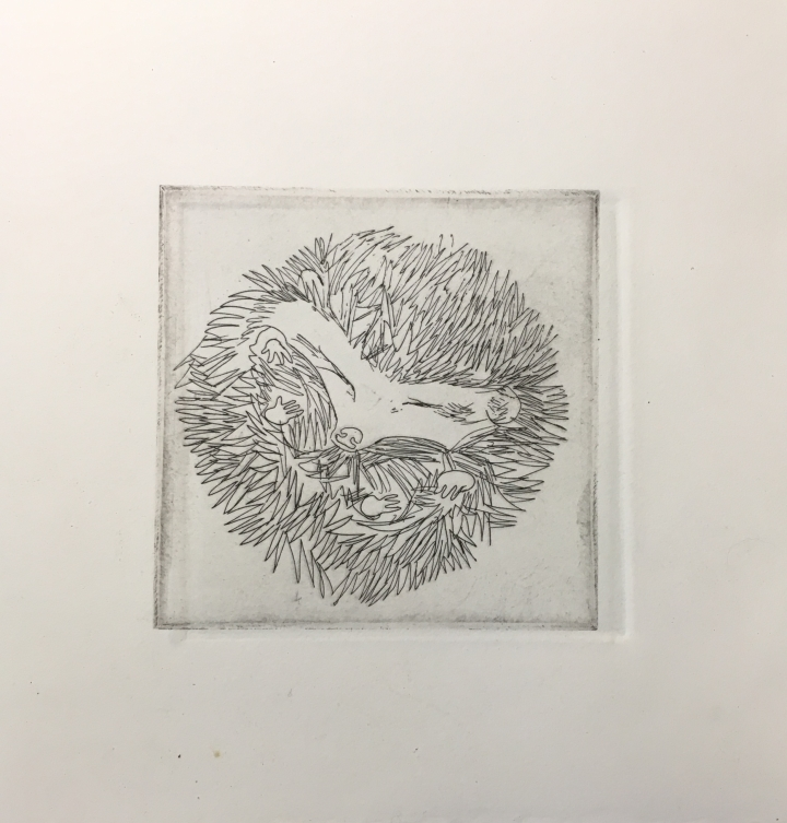 (c) Confais Les Hibernés Le Hérisson Eau Forte 10x10 imprimé sur papier Hahnemühle 20x20 en 30 exemplaires numérotés et signés