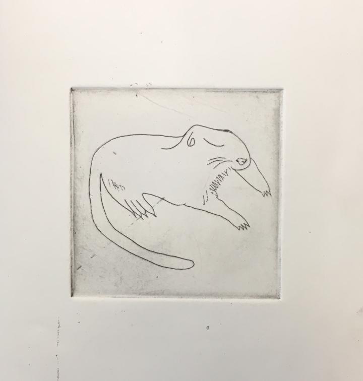 (c) Confais Les Hibernés Le Spermophile Eau Forte 10x10 imprimé sur papier Hahnemühle 20x20 en 30 exemplaires numérotés et signés